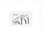 Kvifor er skogen vår snau, blekk på kartong, 2005